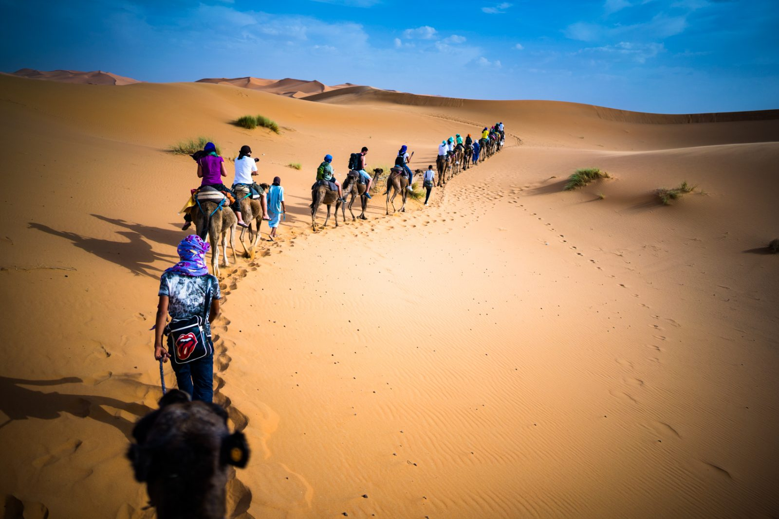 Marocco, camels and desert