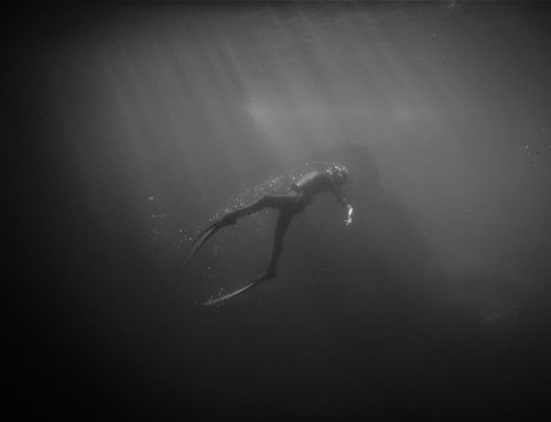 Underwater photography, by Iraia Semperena